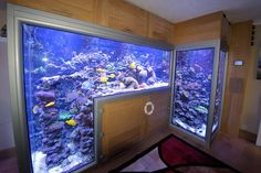 1200 gal double reef drop off Aquarium Terrarium, Aquarium Setup, Home Aquarium, Aquarium Design, Marine Aquarium, Reef Aquarium, Aquarium Fish Tank, Cool Fish Tanks, Saltwater Fish Tanks