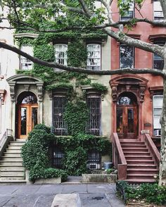 Fort Greene Historic District New York