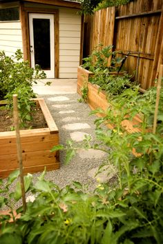 """A raised-bed vegetable garden with a faux flagstone garden path created by recycling broken concrete (""""Urbanite"""") from the site. Sacramento, California."""