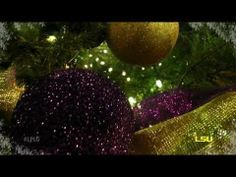▶ LSU Holiday Spectacular - The Holiday Spectacular is a collaborative initiative to promote all there is to do and see at LSU during the holiday season.