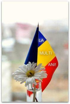 Romanian Flag, Drag, Good Mood, Homeland, Inspiration, Inspired, Country, Beautiful, Romania