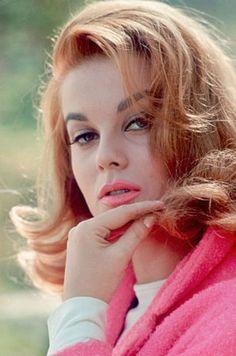 vintagegal:    Ann-Margret 1960's