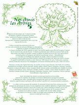 Coloriages nos amis les arbres - Séverine Aubry