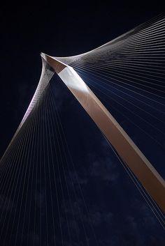 Bridge of Strings, Santiago Calatrava - Jerusalem Space Architecture, Futuristic Architecture, Amazing Architecture, Contemporary Architecture, Architecture Details, Santiago Calatrava, Architectural Engineering, Bridge Design, Civil Engineering