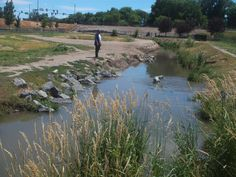 PT 111 JUNE 2014 NAMPA IDAHO WATER THING IN THE DOG PARK.