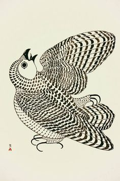 View Young arctic owl by Kananginak Pootoogook on artnet. Browse upcoming and past auction lots by Kananginak Pootoogook. Owl Art, Bird Art, Native Art, Native American Art, Ink Illustrations, Illustration Art, Animal Drawings, Art Drawings, Inuit Art