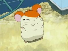 Animated gif shared by Easygoingfuture. Find images and videos about hamtaro on We Heart It - the app to get lost in what you love. Hamtaro, Cartoon Charecters, Pikachu, Pokemon, Line Friends, Anime Animals, Aesthetic Anime, Cute Cartoon, Hamster House