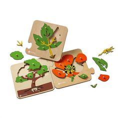 puzzles botaniques et cartes de nomenclatures