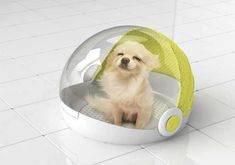 The Dog House Dryer Concept Aims to Keep Your Dog Soft and Dry trendhunter.com
