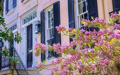 Savannah Doorway Art Print