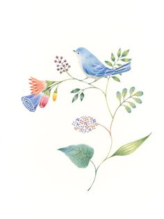 """Little Blue Bird and Flowers"" −RiLi, picture book, illustration, design ___ ""青色の小鳥と草花"" −リリ, 絵本, イラスト, デザイン ...... #bird #blue #flower #鳥 #青 #花"