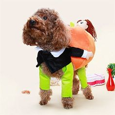 [Halloween Costumes for Dogs] BlueSpace Pet Costume Dog Cat Pumpkin Pets Suit Halloween Costumes Pets Clothing for Small Dogs and Cats, Perfect for Halloween Christmas and Theme Party, M ** Want additional info? Click on the image. (This is an affiliate link) #HalloweenCostumesforDogs