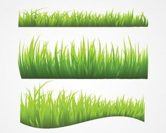 Grass Vector (Free)   Free Vector Archive: