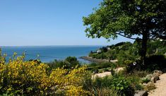 Twee mooie kleine campings met uitzicht over zee Strand, Golf, Water, Places, Outdoor, Brittany, Campsite, Surfing, Germany