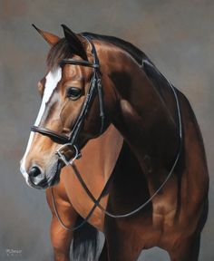 meghanbacso:  Most recent pastel portrait of the beautiful Soli!Now booking for 2015