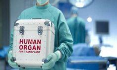 Los tres sospechosos organizaron una red de tráfico de órganos, localizando a vendedores de órganos y a compradores