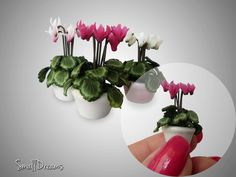 Miniature flowers which she made from polymer clay.