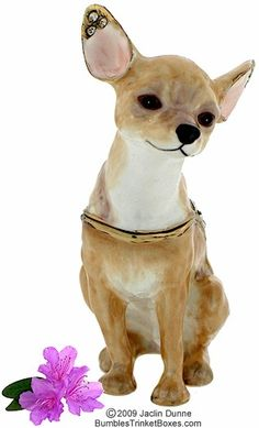 http://www.bumblestrinketboxes.com  Trinket Box: Chihuahua Sitting- Light