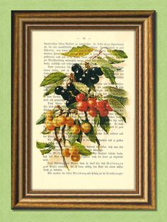 Items similar to CHERRIES - Fruits - Dictionary Art Print -Vintage book page print upcycled - on Etsy Cherry Fruit, Dictionary Art, Buy 1, Cherries, Word Art, Black Friday, Art Prints, Free, Painting