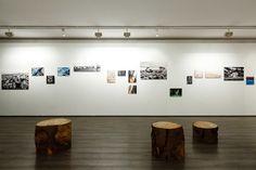 BFA | Argini Variabili exhibition #architecture #mountains #contemporary #modern #photography  #art #Andrea #Vicentini #minimal #Pergine #Valsugana #Trentino #Alto #Adige #Italy #studio #progettazione #architettura #interni #esterni #Trento #Bolzano