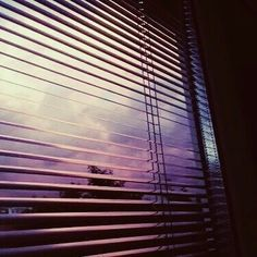 astrology, moodboards and story inspirations. Plastic Grass, Open Up, Blinds, Sky, In This Moment, The Originals, Posts, Home Decor, Heaven