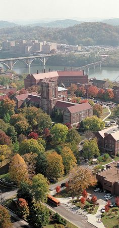 University of Tennessee, Knoxville  Dream School <3   Aerial view of the Hill by utwebteam, via Flickr