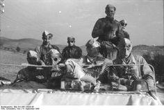 Fallschirmjäger.net - Gran Sasso Rescue