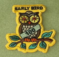 early bird girl scouts and scouts on pinterest