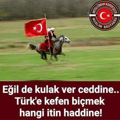 Asil türk milleti