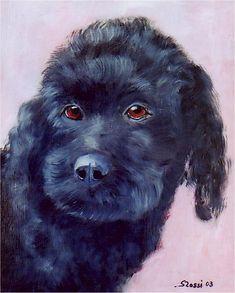 Ulla, la chienne caniche noire de Rosemary Bartell, était également le chien bien vivant d'Erich Alauzen, et de ses parents dans la région nantaise... Une chienne partie à l'âge de 16 ans... au grand malheur de sa maîtresse (la maman d'Erich)... Parents, Dogs, Animals, Mom, Dads, Animales, Animaux, Pet Dogs, Raising Kids