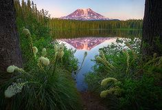 Mount Adams At Sunset From Takhlakh Lake by kevin mcneal