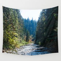 Tree Wall Tapestry | Photo Wall Tapestry | Tapestry Wall Hanging | Nature Wall Tapestry | Forest Bedroom Decor | Forest Wall Hanging by GriffingPhotography on Etsy https://www.etsy.com/listing/241849119/tree-wall-tapestry-photo-wall-tapestry