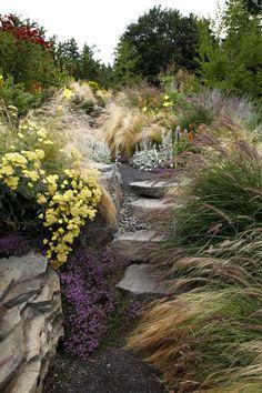 Portland garden with pennisetum karley rose fountain grass.