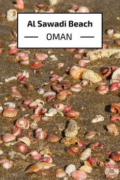 Al Sawadi beach is located North of Muscat in Oman. It is surrounded by islands so a great spot for diving and snorkeling. But if you prefer to stay on land, you could pick up some beautiful shells - Click to open the guide with many photos and detailed information to plan your visit