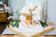 Seashell Crafts, Beach Crafts, Fun Crafts, Crafts For Kids, Borax Crystals, Diy Crystals, Diy Christmas Gifts, Holiday Decor, Christmas Ideas