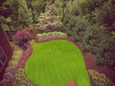 Landscaping idea...