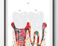 Molar Tooth Section Dental Art Print Anatomy Art Teeth and Gums Molar with Enamel Dentin Pulp Root Medical art Watercolor Dentist Clinic Art Dental Surgery, Dental Implants, Implant Dentistry, Nose Surgery, Dental Hygienist, Teeth Art, Dentist Clinic, Molar Tooth, Art Watercolor