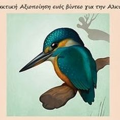 Beautiful digital art by Mark Verhaagen, we used to be in art class together in highschool! Different Types Of Animals, Pretty Birds, Kingfisher, Magazine Design, Blue Bird, Cover Design, Art Projects, Digital Art, Character Design