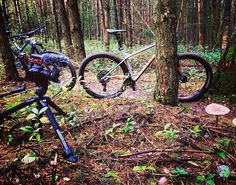 Camera Drone Mountainbikes & Mushrooms... Second day of filming with the @trekbikes Stache 9.7 and Fuel EX 8. Today in Kwintelooijen (Netherlands). Soon our double review at GearLimits.com   #trek #trekbikes #mtb #mtblife #mtb #mountainbike #mountainbiking #mountains #outdoor #outdoors #getoutside #getoutdoors #stayactive #theoutbound #nature #fun #play #new #forest #review #preview #news #bike #enduro #enduromtb #cool #silver #bicycle #cycling #cycle #camera #drone #fuel #stache