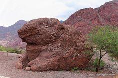 La Roca del Sapo de la Reserva Natural quebrada de las Conchas, Cafayate.....que secreto esconde?