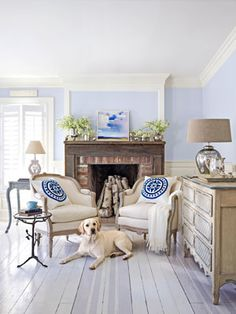 This lab loves this living room's painted floors -- the homeowner used high-gloss deck paint.