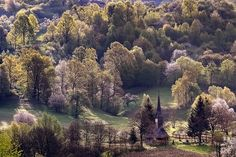Stefan Bela din Baia Mare Vineyard, River, Outdoor, Belle, Pictures, Outdoors, Vine Yard, Vineyard Vines, Outdoor Games