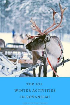15 Best Things to Do in Rovaniemi in Winter - Lapland, Finland - Our Life, Our Travel Brazil Travel, Us Travel, Travel Tips, Places Around The World, Travel Around The World, Northern Lights Finland, Sweeden Travel, Stuff To Do, Things To Do