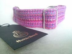 Harris tweed martingale Greyhound collar in pink confetti. Silver buckle.