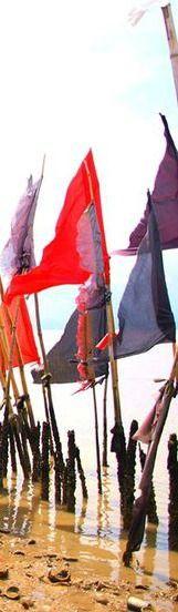 #caribbean #caribbeanlifestyle #trinidad #mayaro #worship #flags #hindu