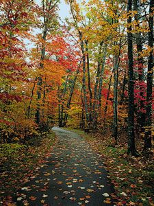 A little over a week of Summer and I'm already craving fall..<3