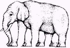 Raciocínio é importante para os jogadores de poker. Vamos treinar!  Quantas pernas tem o elefante?