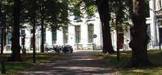 Antieke auto's - Lange Voorhout.