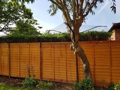 Pet Fencing Solutions: Cat Fence, Cat Enclosure, Catio, Cat Run Cat Pen, Cat Cages, Cat Enclosure, Cat Room, Cattery, Catio, Cat Stuff, Fencing, Animals And Pets