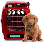 On very hot days....Komfort carrier is the way to go. It has a little cooling system for your pup!